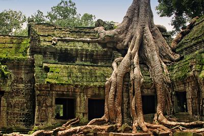 Ta Phrom, Cambodia