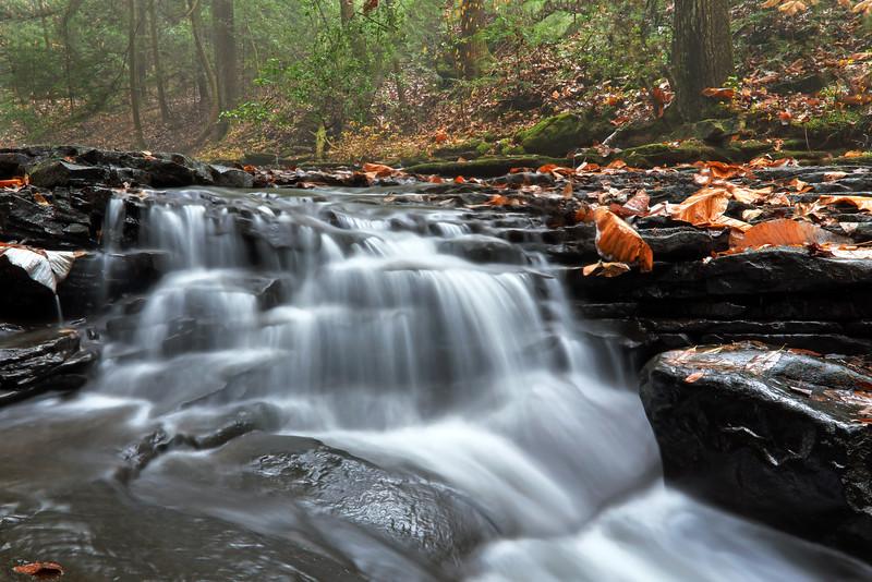 Fiery Gizzard Trail Waterfall