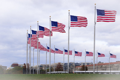 US flags at the Washington Monument