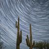 Star trails over the Arizona desert