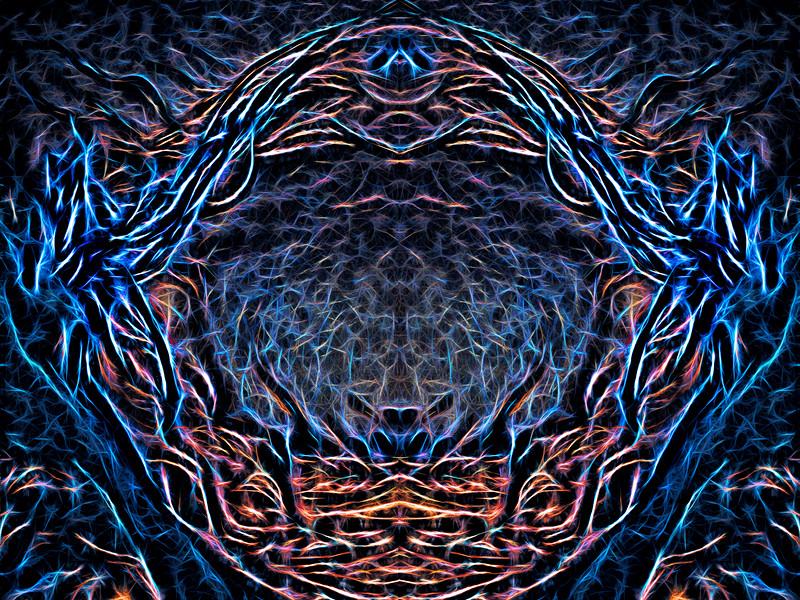 Heart Void : Symmetry Series #17