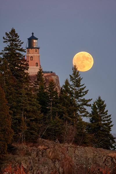 Moon Rising, Standing Tall #16