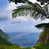 St. Lucian Rainbow