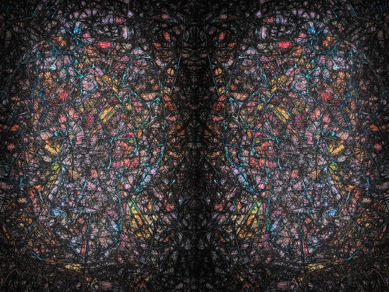 Beauty Beneath The Net : Symmetry Series #1