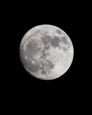 Full Moon Portrait  2019