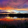 Sunset over Ritch Grissom Memorial Wetlands (Viera Wetlands), Florida .