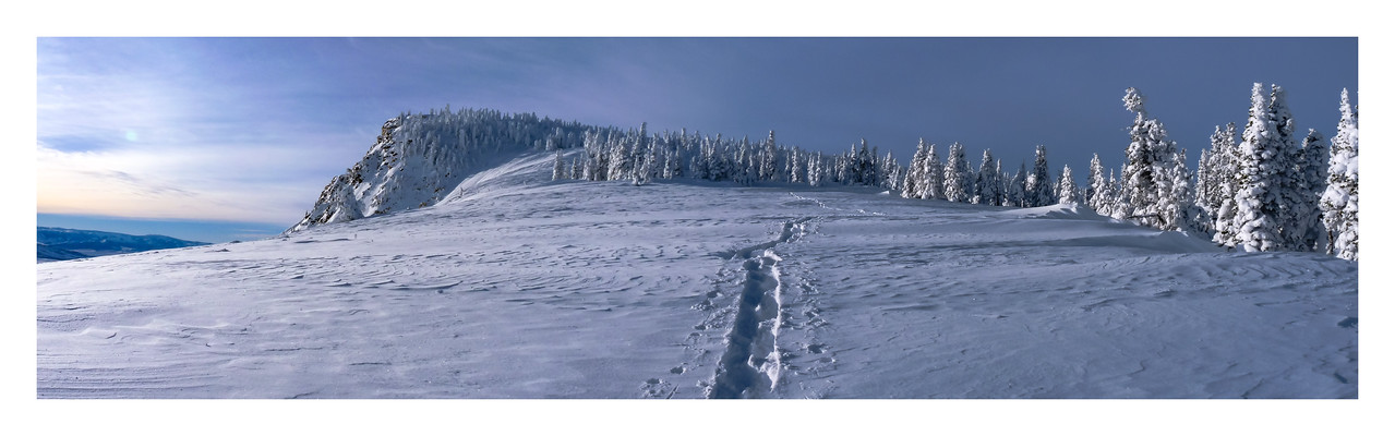 Mt. Harrison Snowshoe Trail