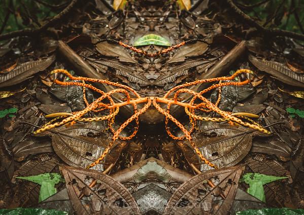 Jungle Alien