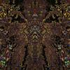 Dream Of Spring : Symmetry Series #9A