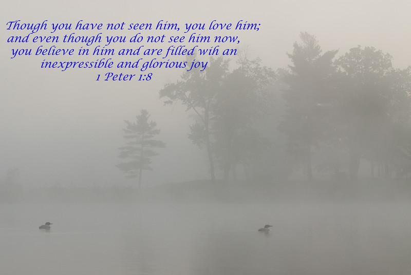 1 Peter 1:8