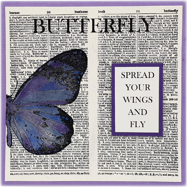 Big Butterfly & Dictionary BGround 12-05-21