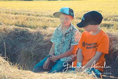 Friends in the sun