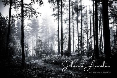 Gloomy atmosphere