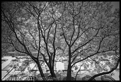 Church Street Morning.  Memorial Day Weekend, 2008.