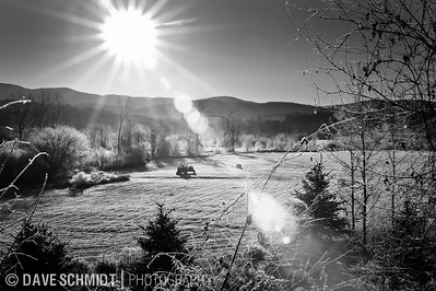 Another weekend morning exploration.  In the low lands ice had formed on the trees.  To get the ice to stand out it needs to be back-lit.  I drove by this field and loved the tractor sitting out there.  November, 2010. Jericho, Vermont.