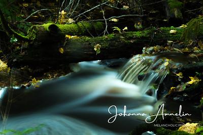 Autumn creek,