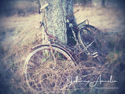Forgotten bicycle in December 2