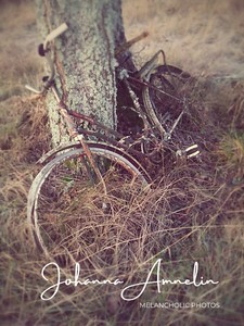Forgotten bicycle in December