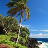 Puna, Big Island, Hawaii