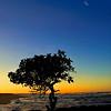 Turtle Bay, O'ahu, Hawaii (SOLD)