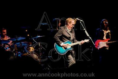 Ray Davies performing