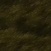 Pacific Northwest Coastal Grass  1
