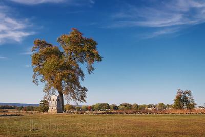 Gettysburg Tree in Autumn