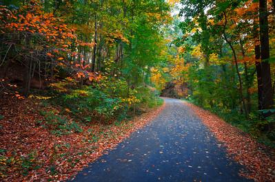 Trailing Through Autumn