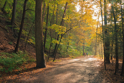 Taughannock Falls Gorge Trail in Autumn II