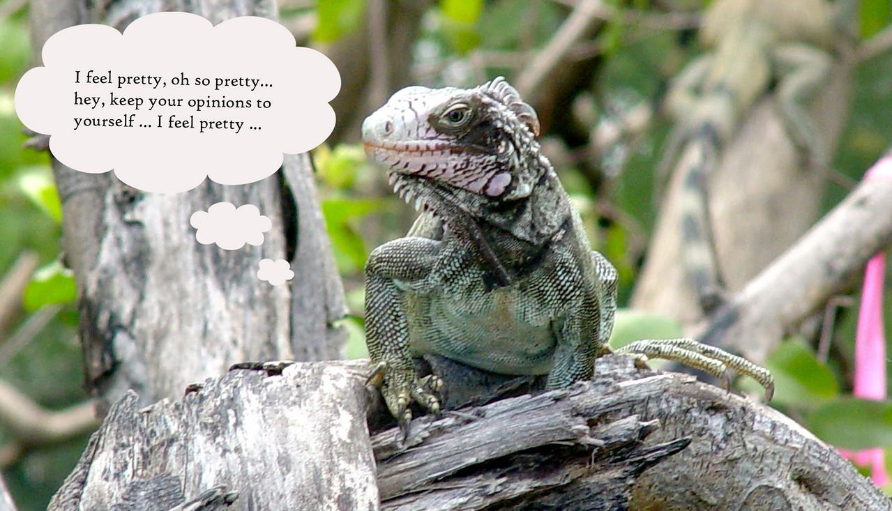Godzilla w tude