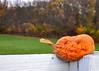 pumpkin smash 102713_0102