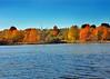 lake front 102315_0111