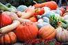 gourds 092815_0120