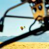 balloon 259