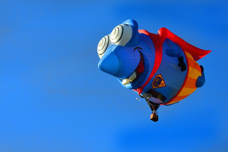 balloon bugeye 073017_7144