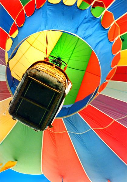 balloon 239
