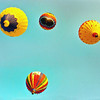 balloon 240