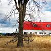 vermpnt farm 022517_4715