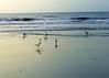 beach 080614-002 2
