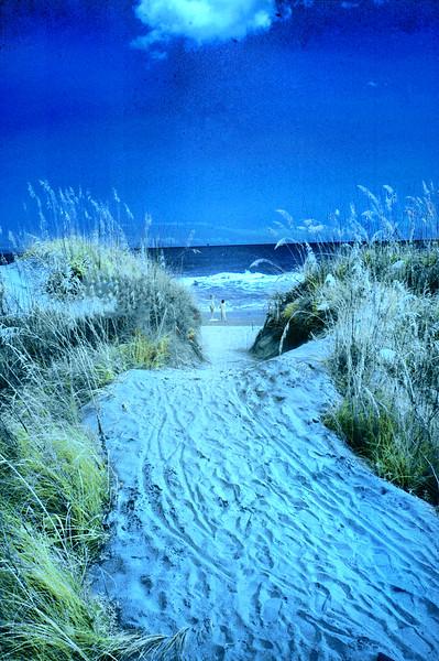 beach INFRD 080514 216 4