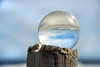 beach crystal 030516_0782
