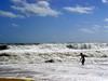 beach 91705 2373