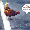 chicken 062615 _3596 text 1