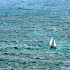 sailboat 080415_6202e 2