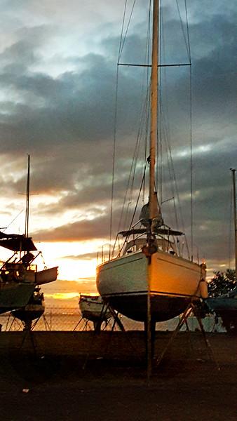 sailboat MCH 175444