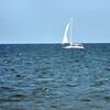 sailboat 071715 _0715
