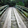 wooden bridge 081716_2964