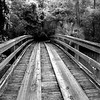 wooden Bridge  081716_2962 bw