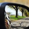 car mirror 042716_0115