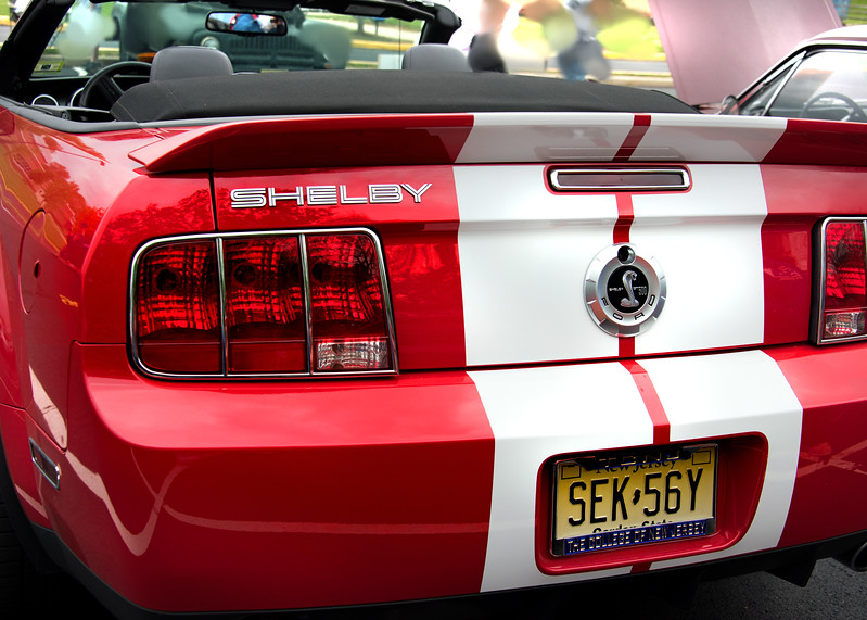 shelby 050317_5509